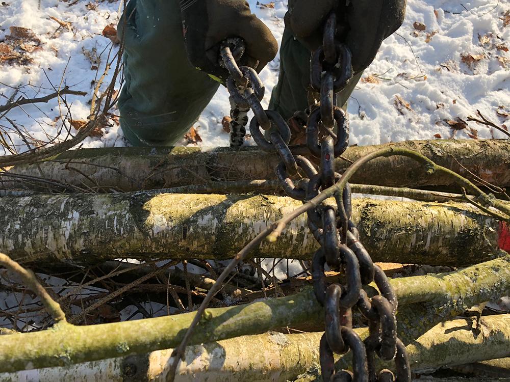 Brennholz wird mit Kette zusammengezogen