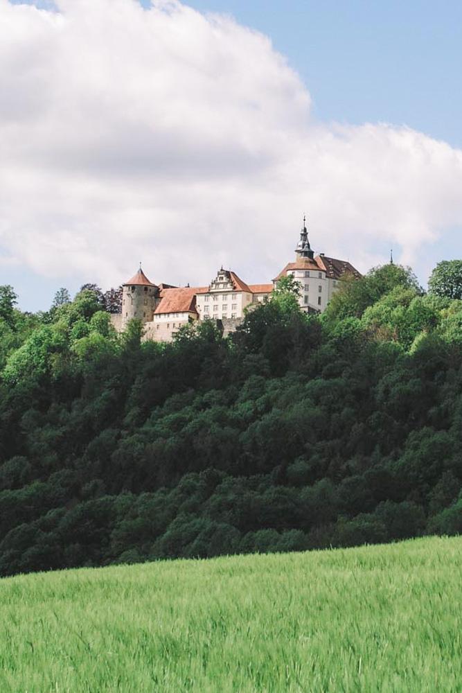 Schloss Kirchberg fotografiert von unten aus dem hohen Gras