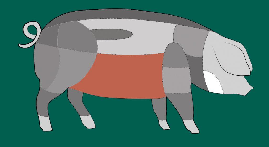 Hier sitzt der Bauch des Schwäbisch-Hällischen Schweins.