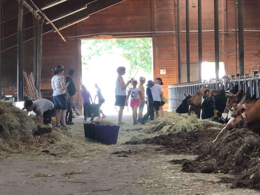 Der Biolandhof Fauser ist auch Lernort Bauernhof für Schulklassen.